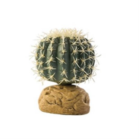 Cactus Barril Pequeño PT2980