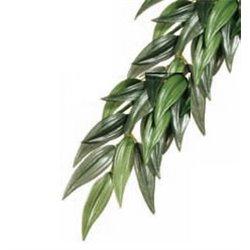 Planta de Seda Rucus Gde. (16,5 x 61,5 x 4 cm.) PT3051