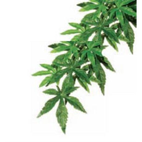 Planta de Seda Abuliton Gde. (19 x 68 x 4,5 cm.) PT3052